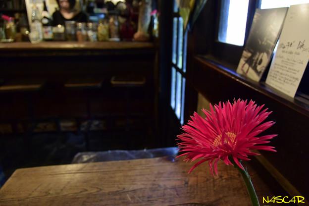 喫茶店 国分寺の「ほんやら洞」 18042018