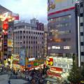 新宿 sunset view
