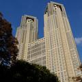 Photos: 東京都庁舎 28102018