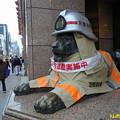 ライオン像のコスプレ 火災予防運動 12112018