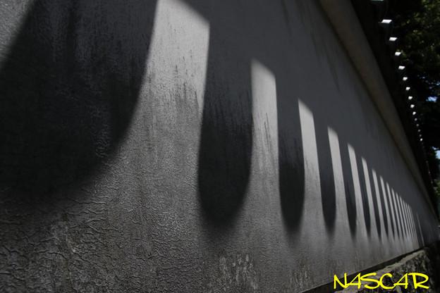 Photos: Light and shadow 30052019