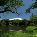 Photos: 小石川後楽園 30052019