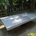 Photos: 石の卓球台 19062019
