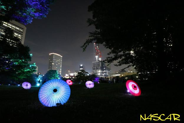 江戸夏夜会 25072019