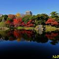 Photos: 秋晴 01122018