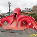 Photos: 蛸の滑り台 02032020