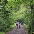 Photos: 国立科学博物館附属自然教育園 23062020