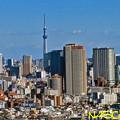新宿エルタワーより 09022021