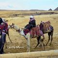写真: エジプト