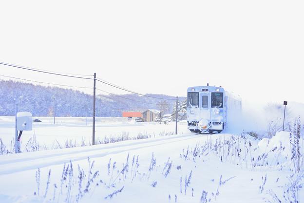 Photos: 北美瑛/ JR