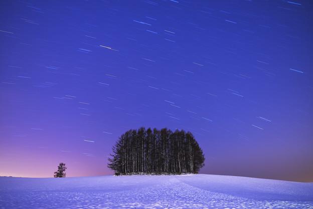 北海道 美瑛。柔和七星の丘