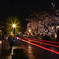写真: 夜雨櫻花街曲