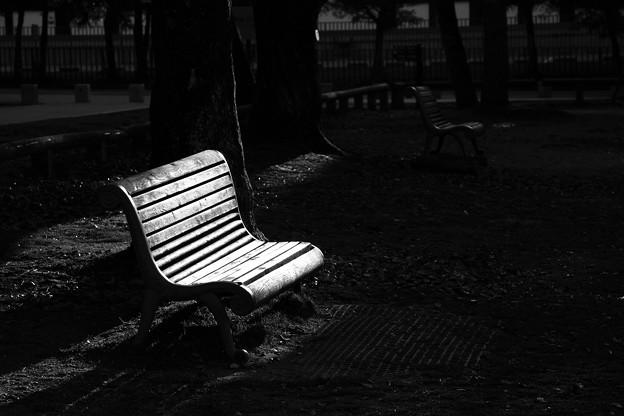 夕暮れ時のベンチ:IMG_0587_R01