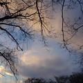 冬の日の夕暮れ