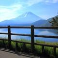Photos: 本栖湖にて03