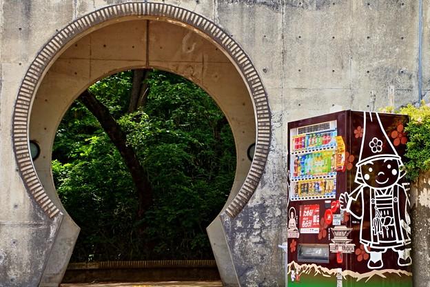 Photos: 新緑の古城公園01