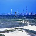 写真: ウインドサーフィン