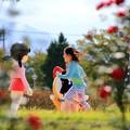写真: 秋晴れのある日03