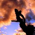 写真: 雲を喰らって!