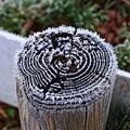 写真: 凍てつく朝06