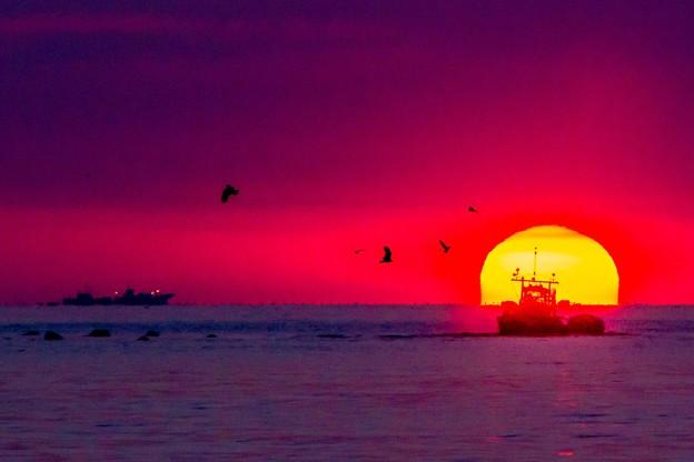 ダルマ日の出