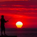 Photos: 朝陽を釣る