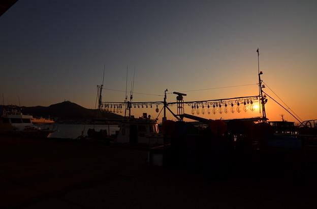 Photos: DSC_7409