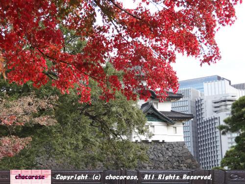 紅葉と富士見櫓の先の大手町のビル群
