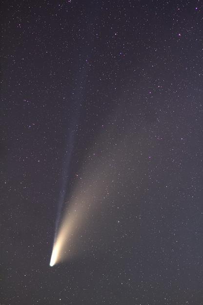 ネオワイズ彗星 7月21日