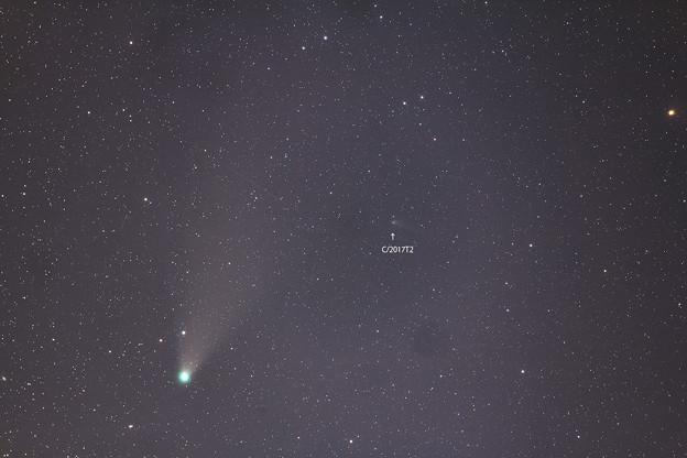 Photos: ネオワイズ彗星とパンスターズ彗星