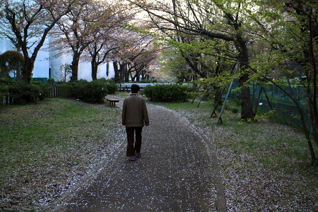 花散らしの風 07