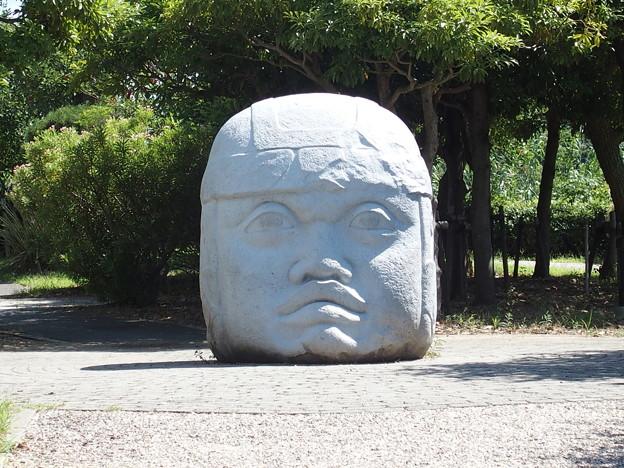 写真: メキシコ巨頭石