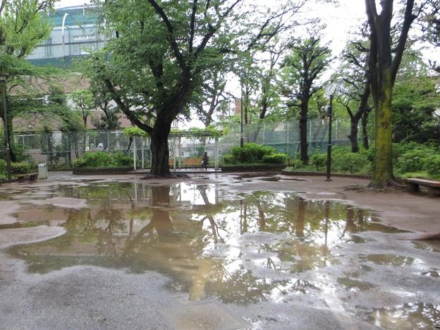 水日だし@雨上がり180418