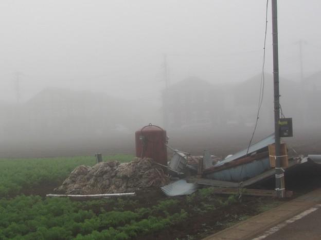 濃霧@畑191002