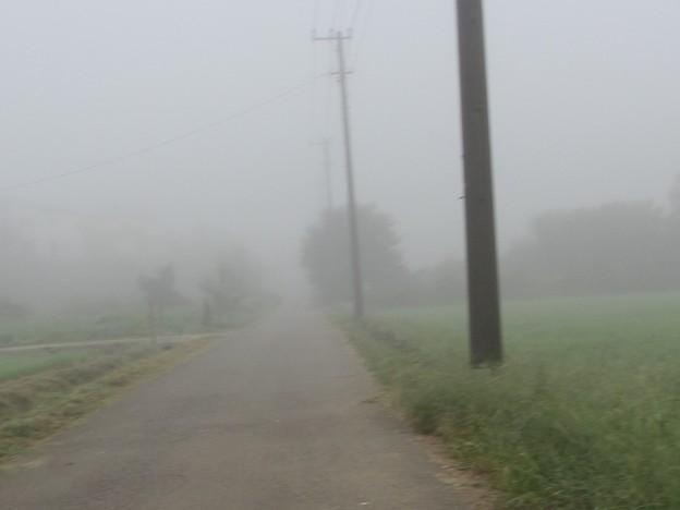 濃霧@見えない道191002