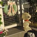 Photos: CD@うさぎ201201