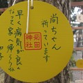 Photos: やくえま@きく210105
