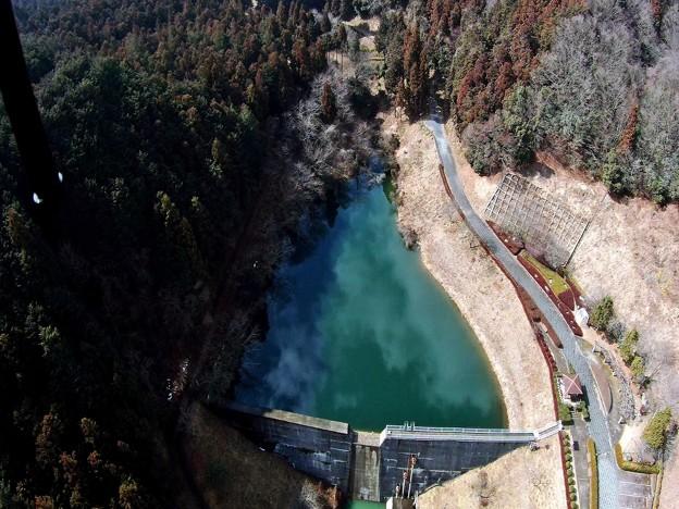 写真: ダムを眺めて