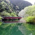 Photos: 赤い橋
