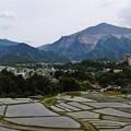 写真: 武甲山と棚田