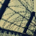写真: フェンス