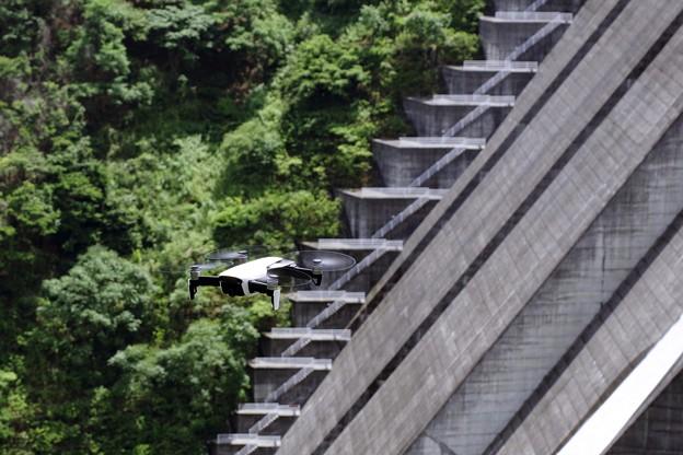 写真: ダムを眺める