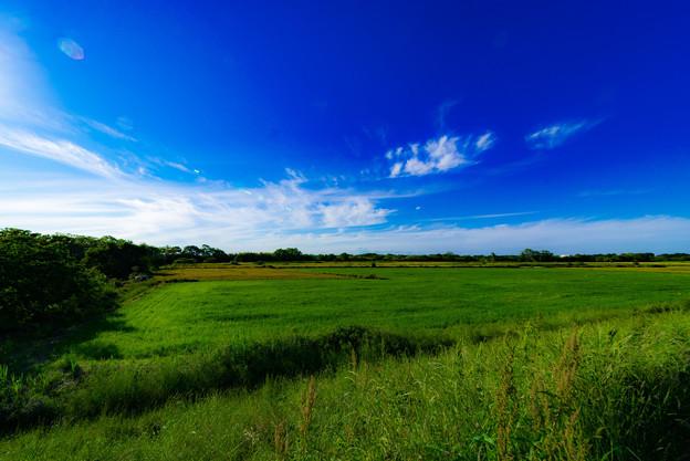 写真: いい天気@川島