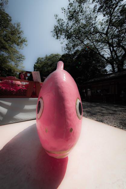 前から見た鯛@川越氷川神社