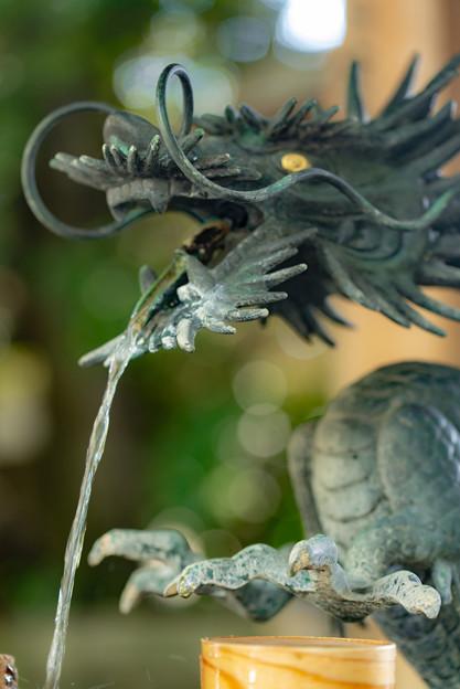 手水場の龍@川越氷川神社