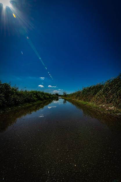 写真: 冠水した道路@桶川