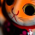 Photos: 喜多院で買った招き猫2@ウチ