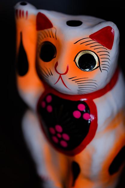 喜多院で買った招き猫@ウチ