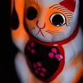 Photos: 喜多院で買った招き猫@ウチ