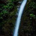 宿谷の滝1@毛呂山